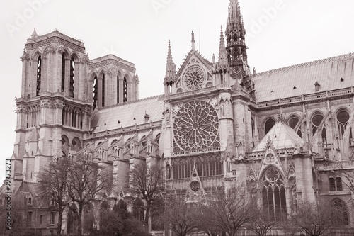 Notre Dame Cathedral In Black And White Sepia Tone In Paris