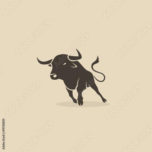 Fotografie, Obraz  Running bull