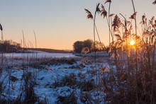 Frosty Morning Landscape