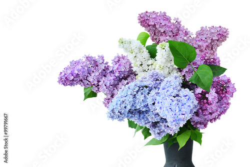 Foto op Canvas Lilac Lilac flower bouquet several colors in vase isolated - Syringa vulgaris