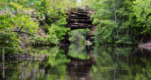 Spoed Foto op Canvas Grijze traf. Tennessee Panorama. Natural arch formation surrounded by beautiful mountain laurel reflected in a lake. Pickett State Park.