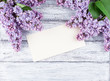 Lilac flowers with card