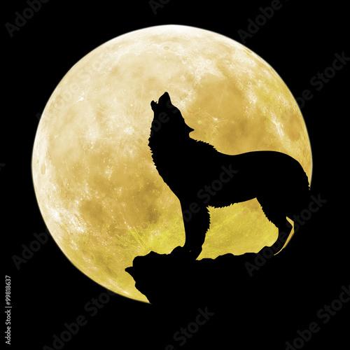 sylwetka-wilka-przed-ksiezycem
