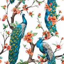 Watercolor Vector Peacock Pattern