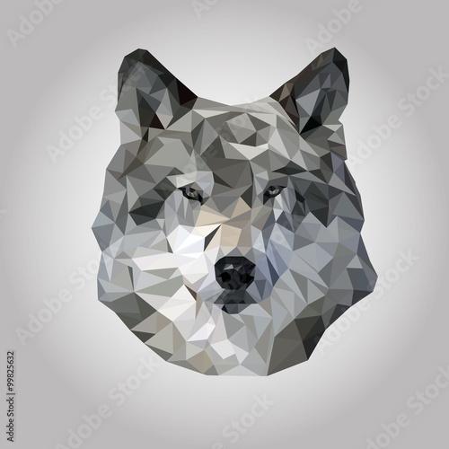 Photo  Wolf polygonal vector.