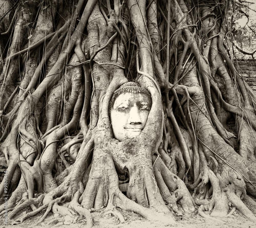 Photo  Buddha head in tree roots in Wat Mahathat, Ayutthaya, Thailand