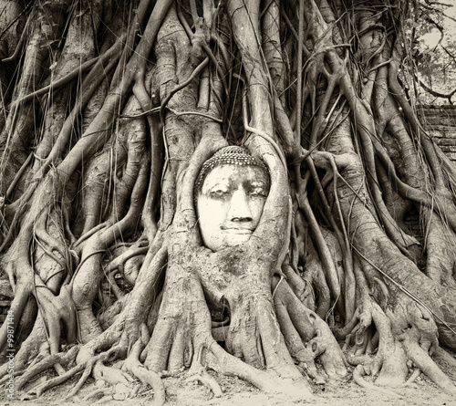Photo  Buddha head in tree roots in Wat Mahathat, Ayutthaya, Thailand