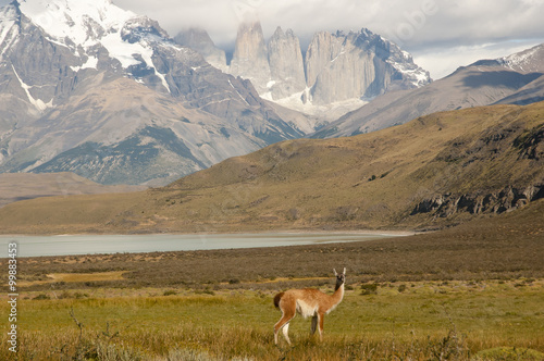 Wall mural - Torres Del Paine National Park - Chile