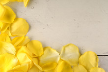 Frame Of Yellow Rose Petals On...