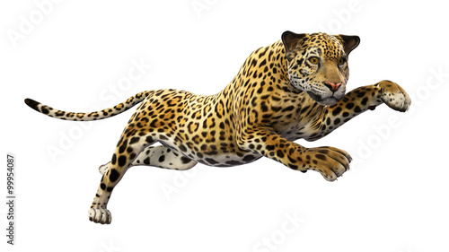 Jaguar leaping, wild animal isolated on white background Fototapeta