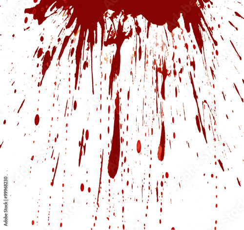 Fotografie, Obraz  Blood splashed white background
