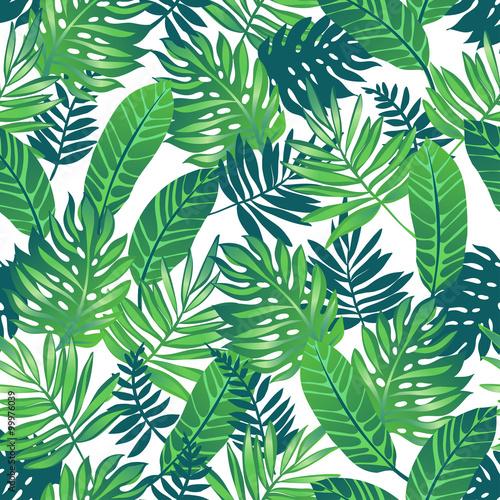 tropikalne-zielone-liscie-na-bialym