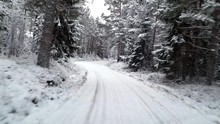 Driving In Winter Forrest In Raasepori, Finland, At A Evening