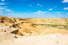 Desert Landscape On A Summer D...