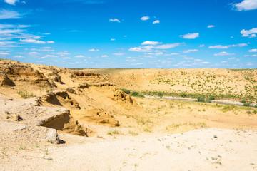 Desert landscape on a summer day.