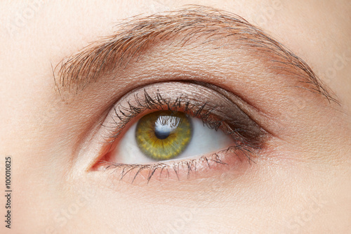 Green Woman Eye Beauty With Light Brown Make Up Colors