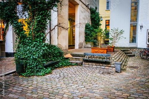 Street scene in Copenhagen Denmark Poster