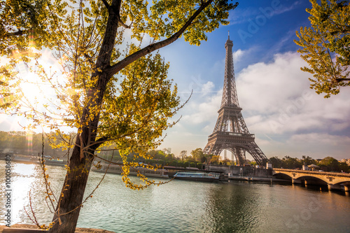 Poster Paris Eiffel Tower with spring tree in Paris, France