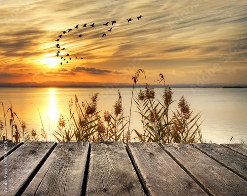 obraz lub plakat amanecer en la orilla del lago