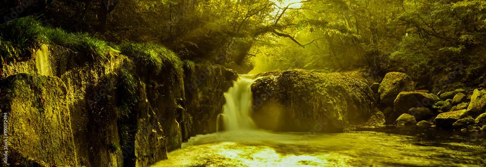 Fototapeta 黎明の滝_菊池渓谷