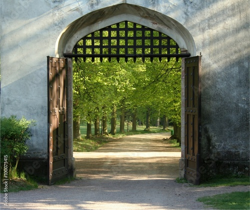 Obraz Square photo of opened doors of the historical gate with bars up - fototapety do salonu