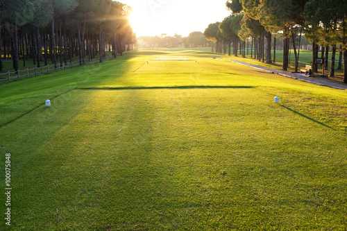 Fotografie, Tablou  playing golf on a golf course