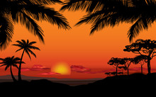 African Landscape With Palm Silhouette. Savanna Sunset Background