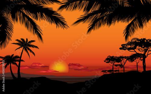Papiers peints Orange eclat African landscape with palm silhouette. Savanna sunset background