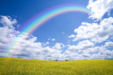Fototapeta Tęcza - Rainbow Over Countryside