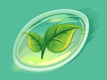Herbal Soft Gel Capsule Leaves