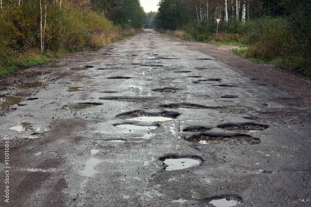 Fototapety, obrazy: Russian road (federal highway)