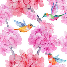 Seamless Pattern,rose Flowers, Hummingbirds .watercolor Illustration