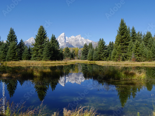 Fotografija  Schwabacher Landing and the Tetons Landscape of the snow-capped Teton mountains and evergreen trees reflected in the Snake River