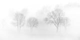 Mgła - 100144666