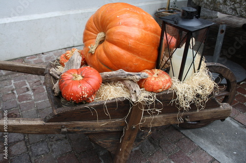 Fotografia, Obraz  Pumpkin and lantern on a wheelbarrow for halloween day