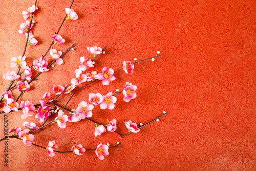 Fotobehang Macrofotografie Chinese cherry blossom