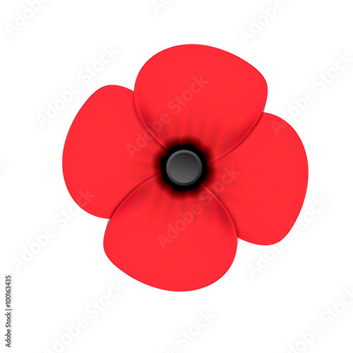 Poppy flower remembrance day white background buy this stock poppy flower remembrance day white background mightylinksfo