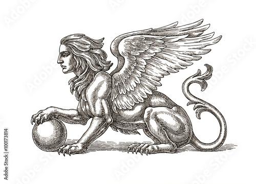 Obraz Сфинкс крылатый, рисунок тушью. - fototapety do salonu