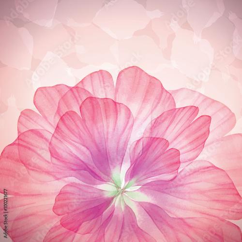 wektorowy-rozowy-piekny-kwiat-akwarela