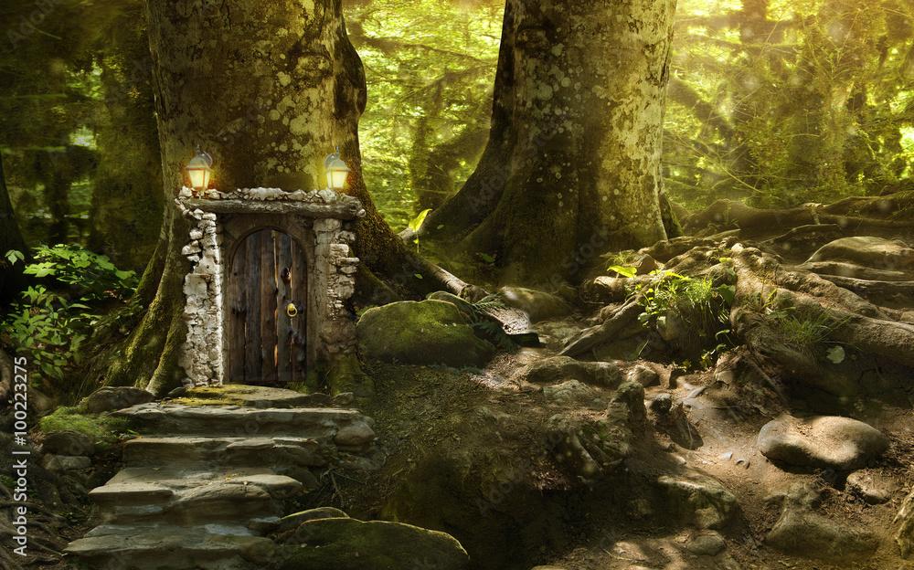 Fototapeta magic fantasy world