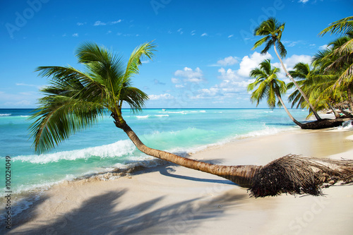 Foto op Canvas Tropical strand caribbean tropical sea