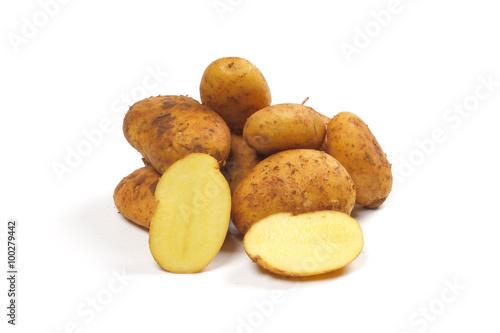 Fotografie, Obraz Kartoffeln, Sorte Sieglinde Galatina