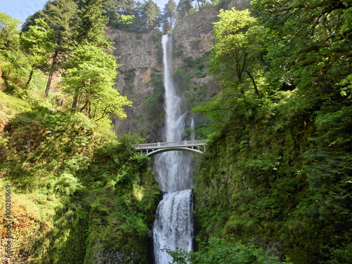 Fototapeta Multnomah Falls with lush greenery in Oregon countryside obraz