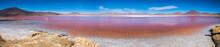 Panorama Of Laguna Colorada