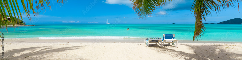 Fototapeta Tropical beach vacation background, palm trees on caribbean island, calm turquoise waters
