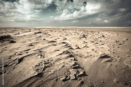 Fotografía Plage d'Espiguette, avec effet du vent et filtré