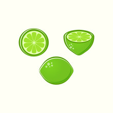 Vector Lime Illustrations