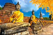 Buddha Statues In Ayutthaya, Thailand,