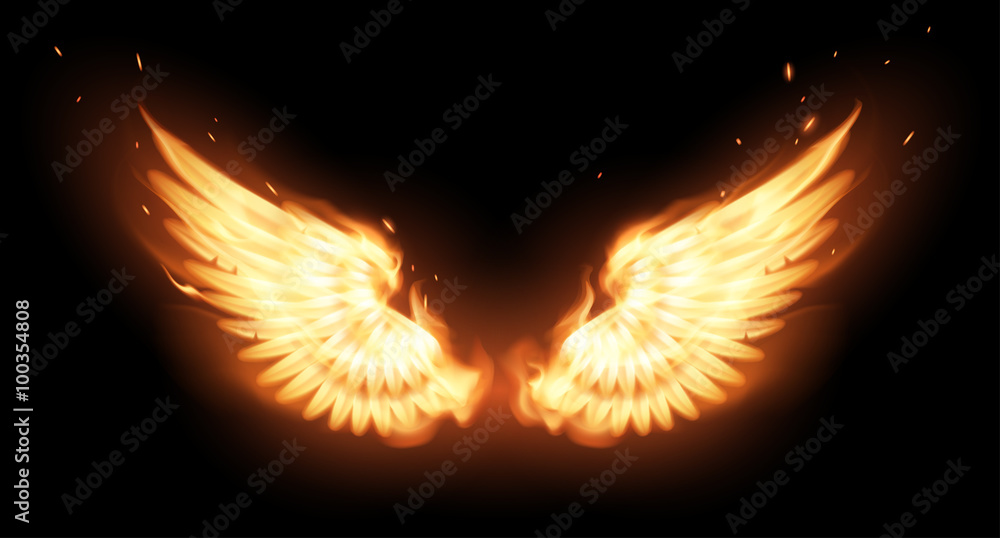 Photo  Wings in flame