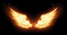Wings In Flame